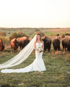 Grazing Buffalo and Ranch Elegance for Elizabeth's Bridals