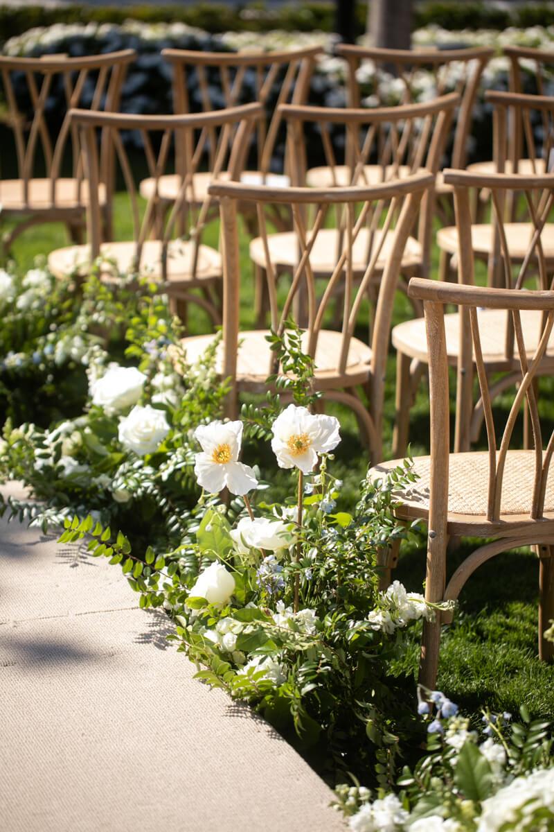white poppy bloom